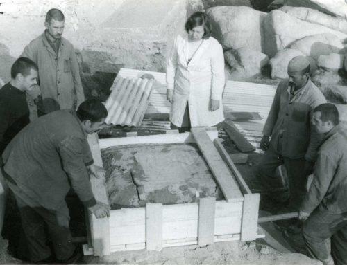 Реализация на реставрационен проект Есхара от Дворцов комплекс на Небет тепе